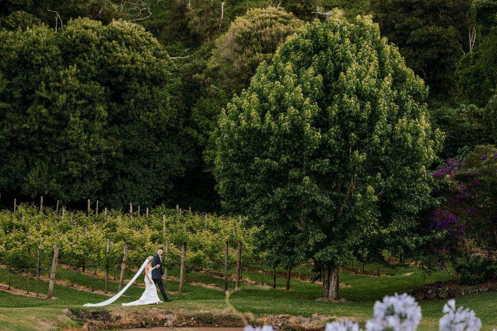 Maleny Wedding Photo Opportunities